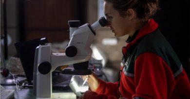 """Concurso """"Jóvenes Científicos – 2020 Primera Edición"""""""